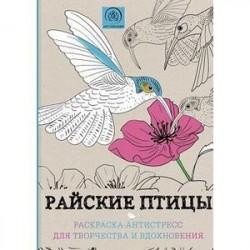 Райские птицы. Раскраска-антистресс для творчества и вдохновения. Дикие животные. Раскраска-антистресс для творчества и