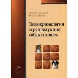 Эндокринология и репродукция собак и кошек