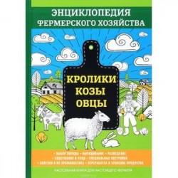 Кролики и нутрии