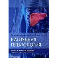 Наглядная гепатология. Учебное пособие
