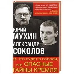 За что судят в России, или Опасные тайны Кремля