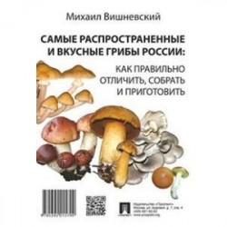 Самые распространенные и вкусные грибы России: как правильно отличить, собрать и приготовить