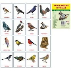 Демонстрационные картинки Супер. Зимующие птицы.16 раздаточных карточек с текстом