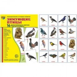 Зимующие птицы. Демонстрационные картинки (набор из 16 карточек)