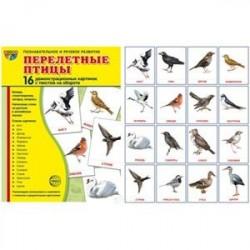 Перелетные птицы. Демонстрационные картинки (набор из 16 карточек)