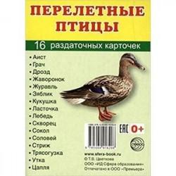 Раздаточные карточки 'Перелетные птицы' (16 карточек)