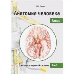 Анатомия человека. Атлас. Учебное пособие. В 3-х томах. Том 3. Учение о нервной системе