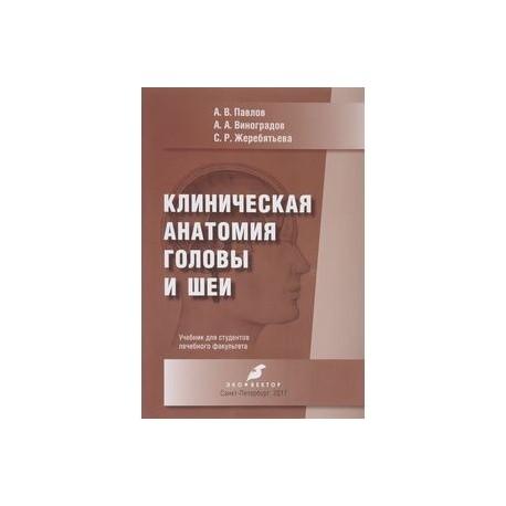 Клиническая анатомия головы и шеи