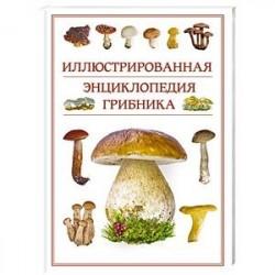 Иллюстрированная энциклопедия грибника.