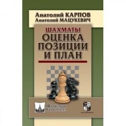 Шахматы.Оценка позиции и план