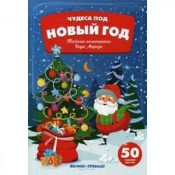 Тайные помощники Деда Мороза:книжка с наклейками