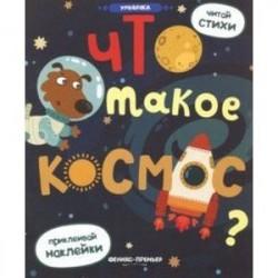 Что такое космос?: книжка с наклейками