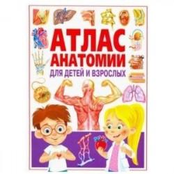 Атлас анатомии для детей и взрослых