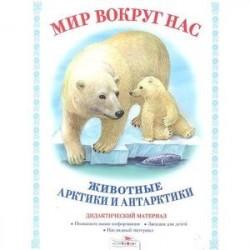 Мир вокруг нас. Животные Арктики и Антарктики