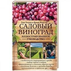 Садовый виноград. Иллюстрированное руководство