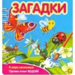 Загадки. В мире насекомых (349104)