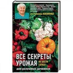 Все секреты урожая на шести сотках для разумных дачников от Галины Кизимы