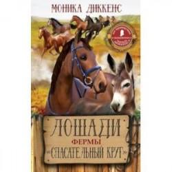Лошади фермы 'Спасательный круг'