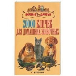 20000 кличек для домашних животных