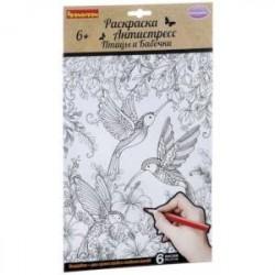 Набор раскрасок антистресс 'Птицы и Бабочки' (CPA2303)