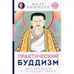 Практический буддизм. Простые шаги к глубокому опыту