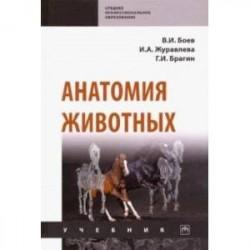Анатомия животных. Учебник