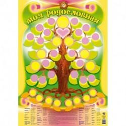 Плакат 'Моя родословная'