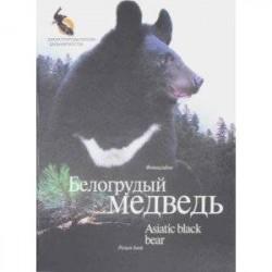 Белогрудый медведь. Фотоальбом