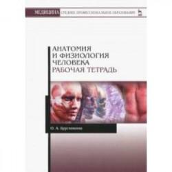 Анатомия и физиология человека. Рабочая тетрадь