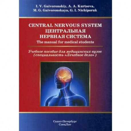 Central Nervous System / Центральная нервная система