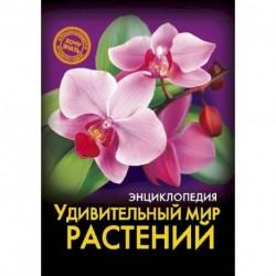 Энциклопедия. Удивительный мир растений