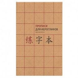 Прописи для китайских иероглифов. А4. (крупная клетка)