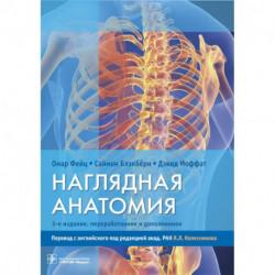 Наглядная анатомия