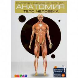 Анатомия: Тело человека. Энциклопедия в дополненной реальности