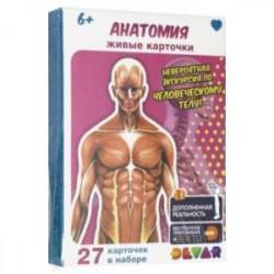 Живые карточки 'Анатомия'