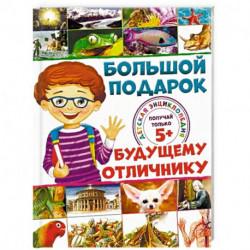 Большой подарок будущему отличнику. Детская энциклопедия