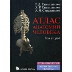 Атлас анатомии человека. В 4-х томах. Том 2: Учение о внутренностях и эндокринных железах