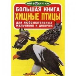 Большая книга. Хищные птицы. Для любознательных мальчиков и девочек. Завязкин О.В.