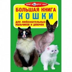 Большая книга. Кошки. Для любознательных мальчиков и девочек