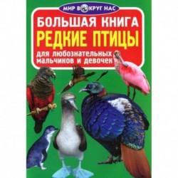 Большая книга. Редкие птицы. Для любознательных мальчиков и девочек