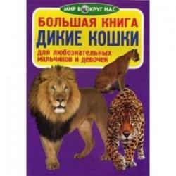 Большая книга. Дикие кошки. Для любознательных мальчиков и девочек. Завязкин О.В.