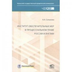 Институт обеспечительных мер в процессуальном праве России и Англии