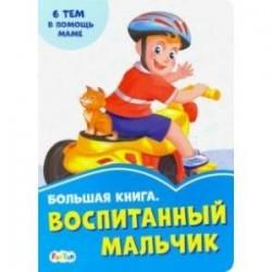 Большая книга. Воспитанный мальчик