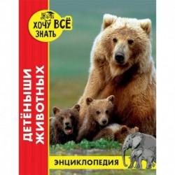 Энциклопедия. Детёныши животных