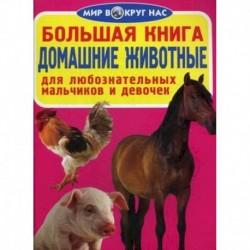 Большая книга. Домашние животные. Для любознательных мальчиков и девочек