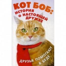 Кот Боб: история о настоящей дружбе (комплект из 2-х книг)