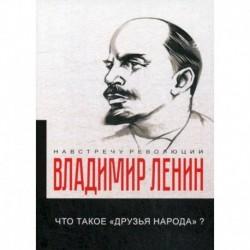 Что такое «друзья народа» и как они воюют против социал-демократов?