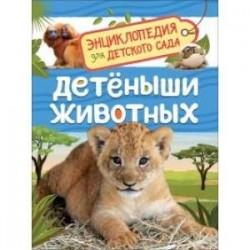 Детеныши животных. Энциклопедия для детского сада