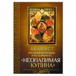Акафист Пресвятой Богородице в честь иконы Ее 'Неопалимая Купина'