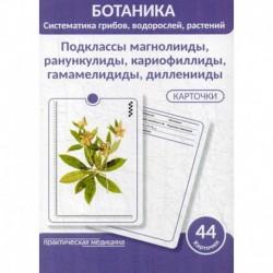 Ботаника. Систематика грибов, водорослей, растений. Подклассы магнолииды, ранункулиды, кариофиллиды, гамамелидиды,